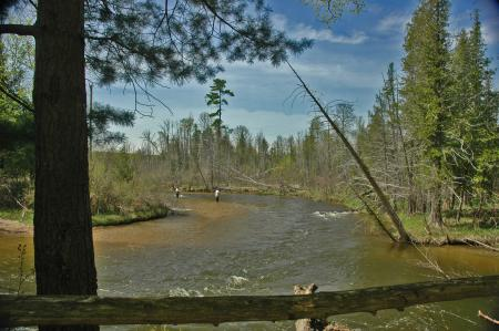 Sring Fishing in the Natural Education Reserve