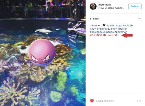 Voltorb at New England Aquarium tagged