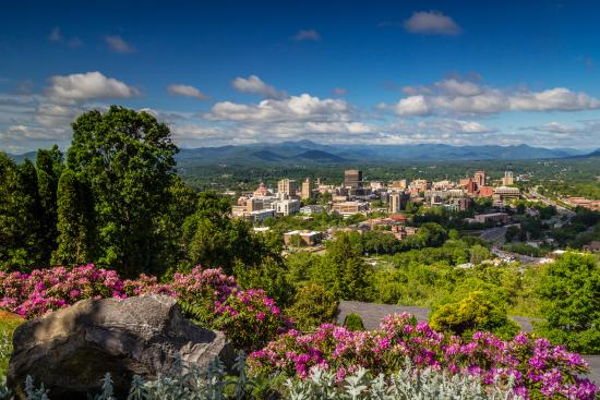 Downtown Asheville Skyline with Rhododendron