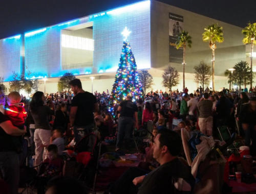 Tampa tree lighting