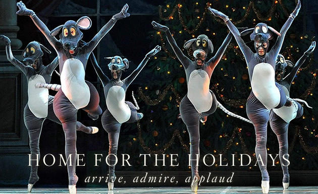 Home for the Holidays: Arts and Culture package