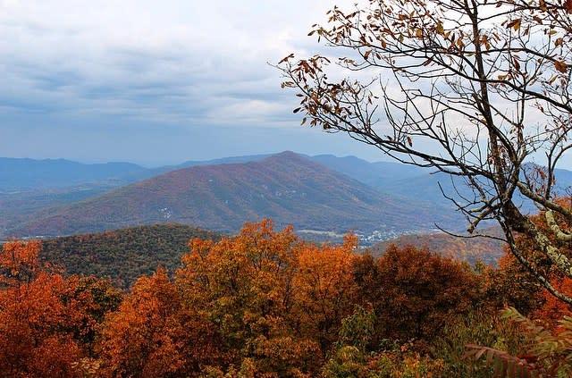 Fall Colors - Fall Photo