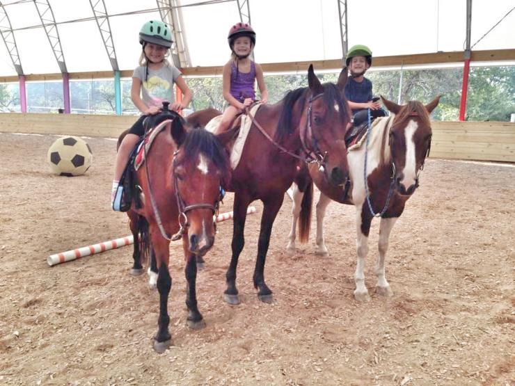 Own-A-Horse Camp