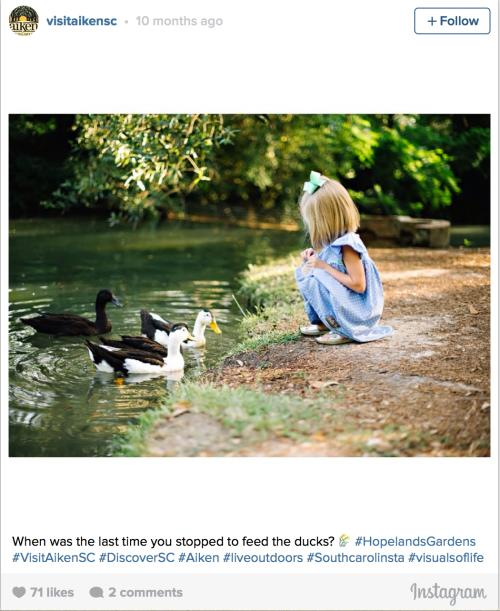 Hopelands Gardens Instagram