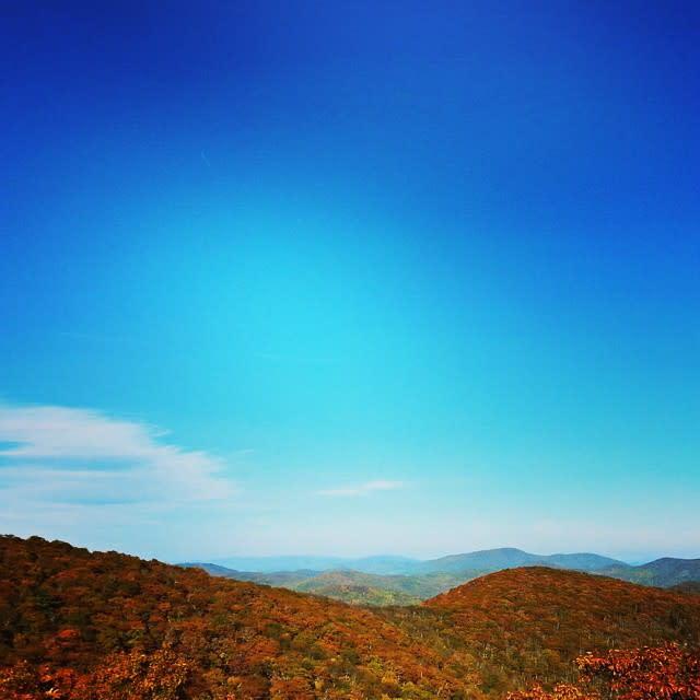 Fall Blue Sky - Fall Photo