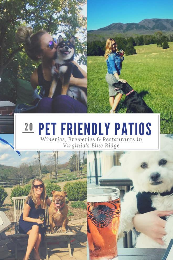 20 Pet-Friendly Patios in Virginia's Blue Ridge