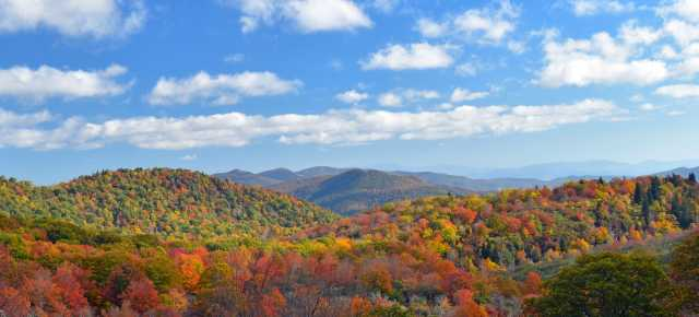 Mid Fall Color at Graveyard Fields