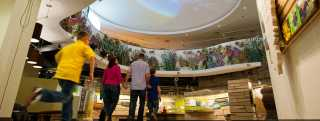 Discovery Centers & Museums