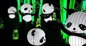 Chinese Lantern Festival -Roer's Zoofari