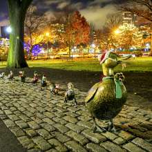 Holiday Ducklings