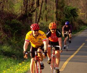 ded_cyclists_on_wod_0.jpg