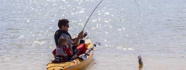Fishing Header