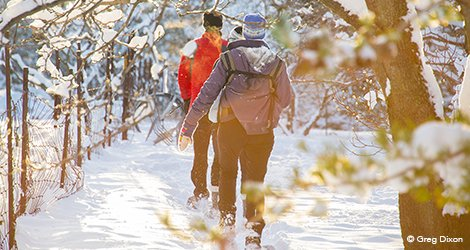 Itinerary Idea: Winter Trails :: Get Active