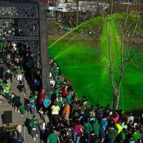 Get Green Fest