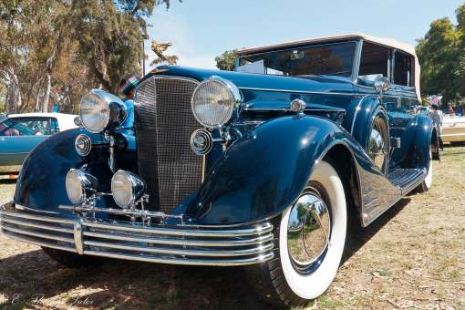 Hot Wheels at Concours d' Elegance