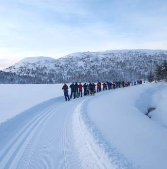 Cross country skiing Knaben southern Norway