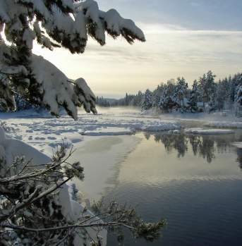 Winter by Storelva in Vegårshei
