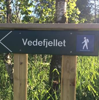 Hiking Vedefjellet Lyngdal Norway