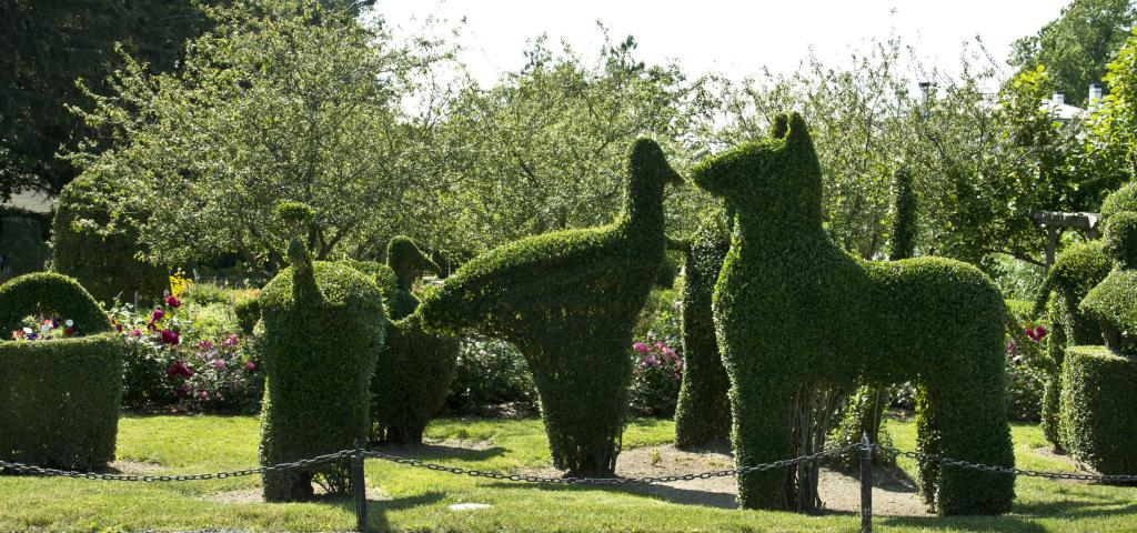 A Look Inside Portsmouth 39 S Green Animals Topiary Garden