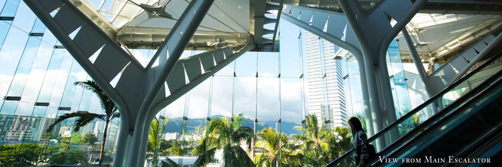 Main Escalator View HCC