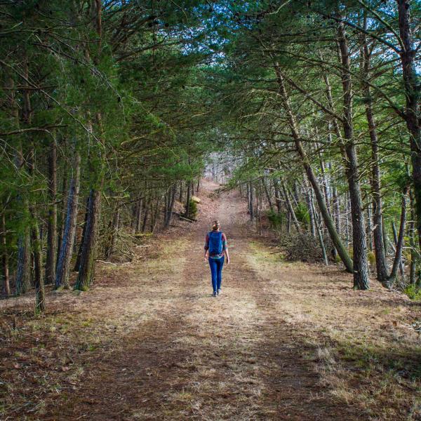 Hiker at Peninsula