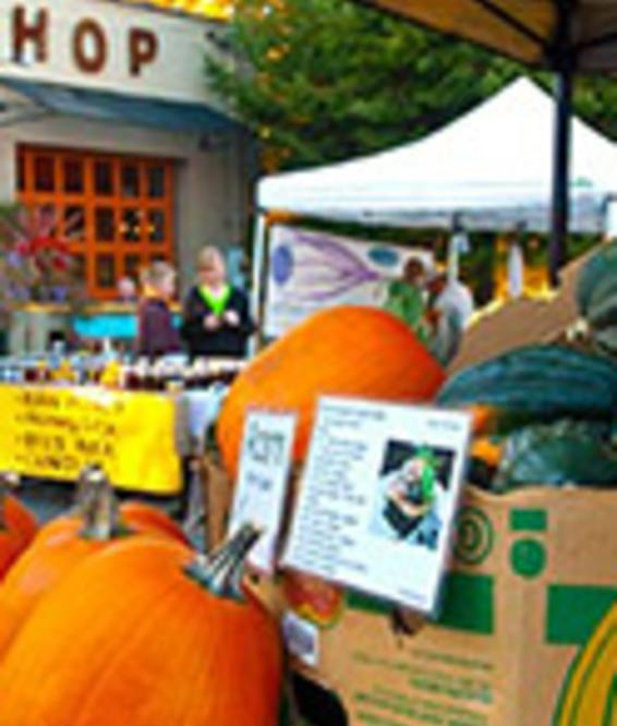 Farmers Markets Pumpkins