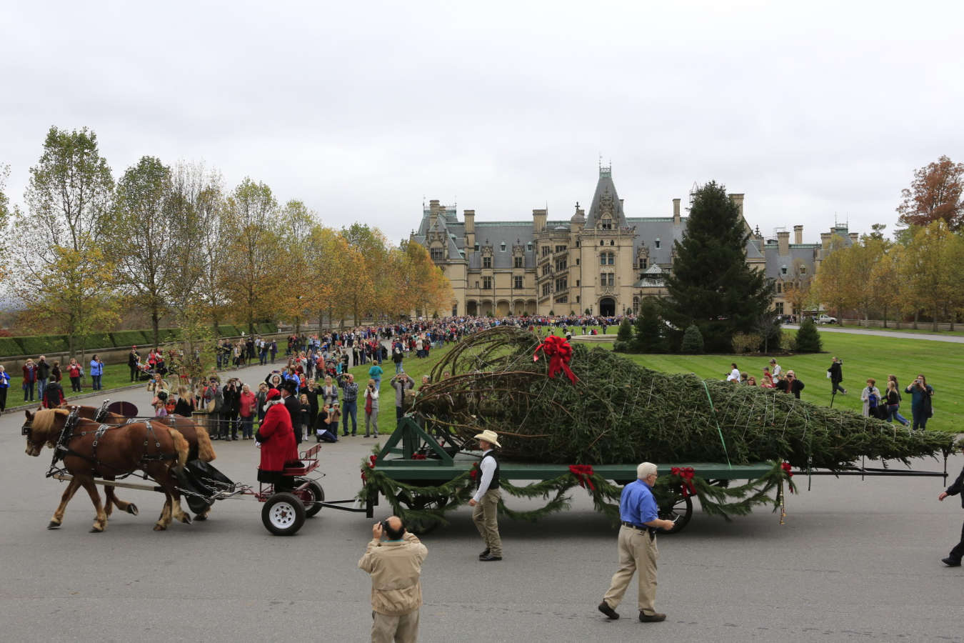 2015 Biltmore Tree Raising