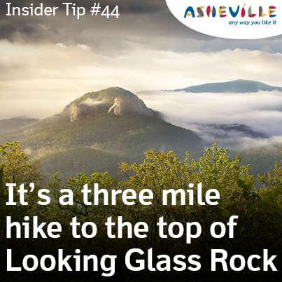 Daytripper: Looking Glass Rock