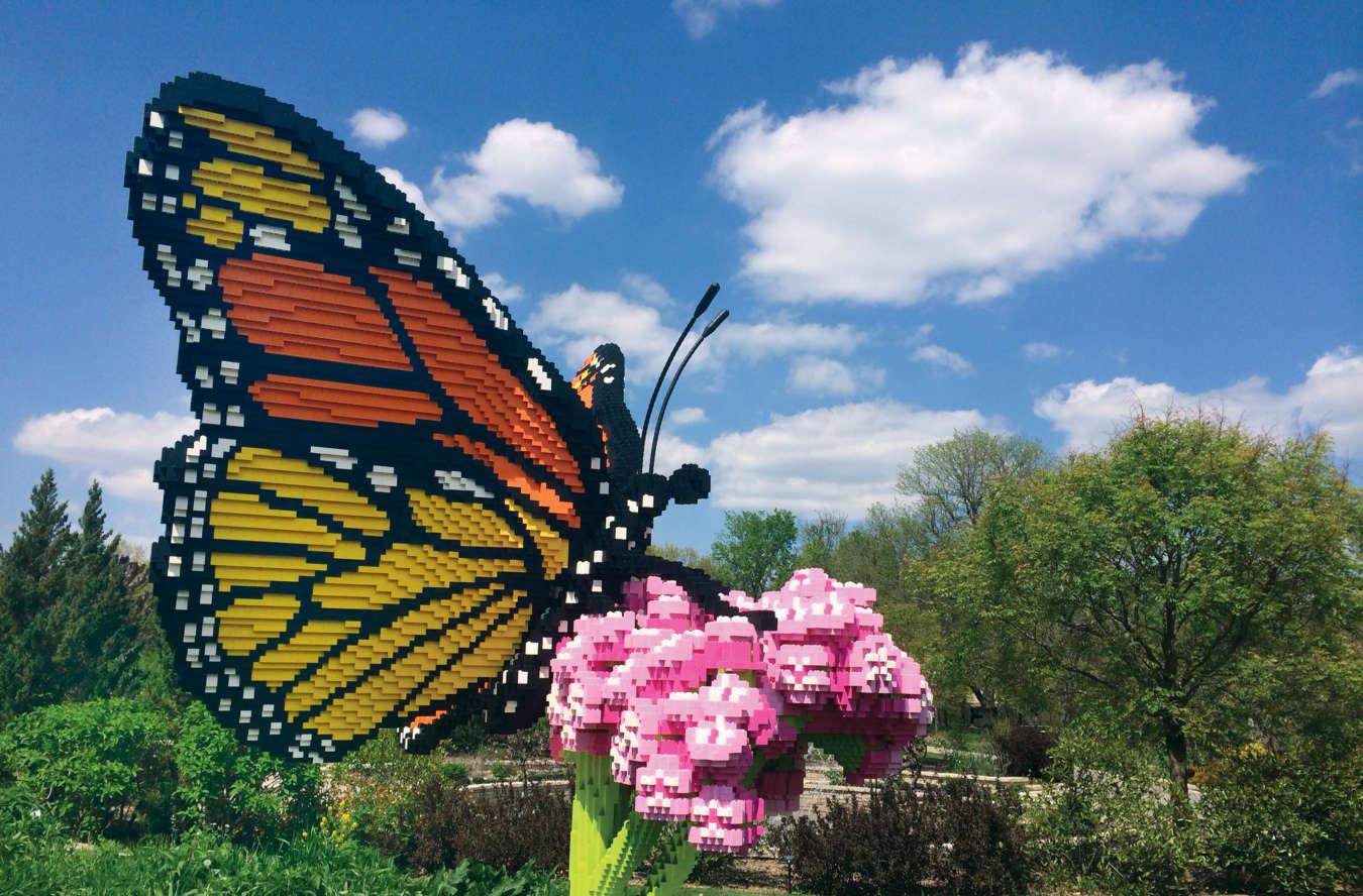 LEGO exhbit at NC Arboretum