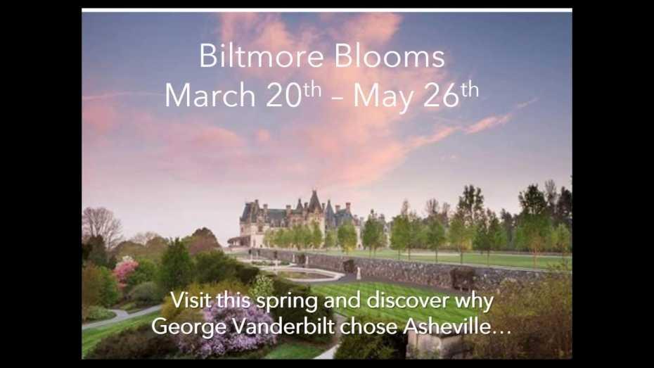 AAA Asheville - Spring Webinar