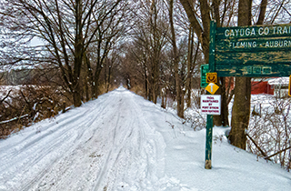 Winter Hike in Cayuga County