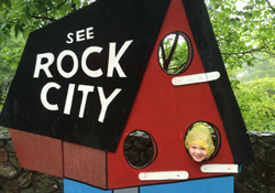 Rock City Birdhouse