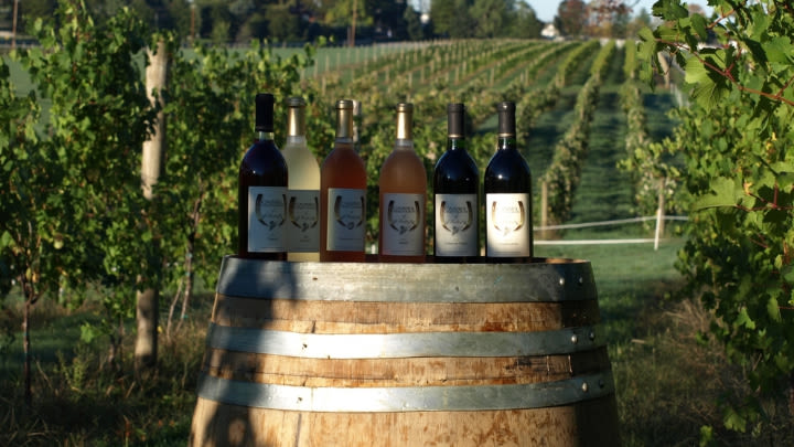 Hersey Vineyard's selection.
