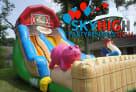 Farm Themed Kids Slide