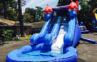 Front 2 fish Inflatable Slide