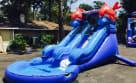 Little Kahuna Wet Water Slide