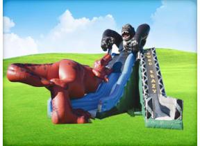 Kongo Crazy T-Rex Double Slide