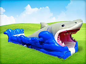 Inflatable shark themed water slide