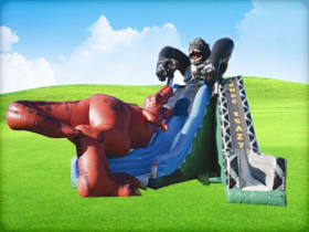 Dual Lane Kongo Crazy Inflatable Slide