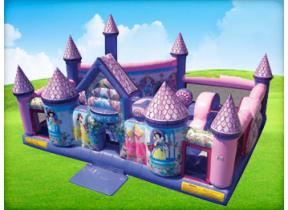 Disney Princess Toddler Palace