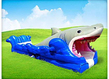 Inflatable shark themed water slide