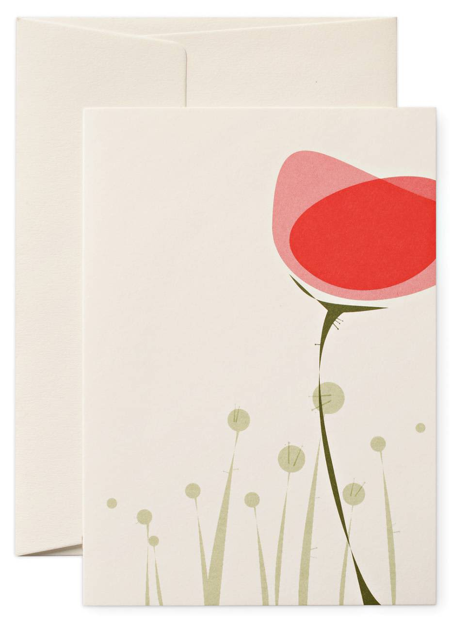Pleased To Meet Poppy Greeting Card