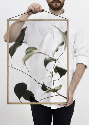 Moebe No.9 A2 Floating Leaves Print