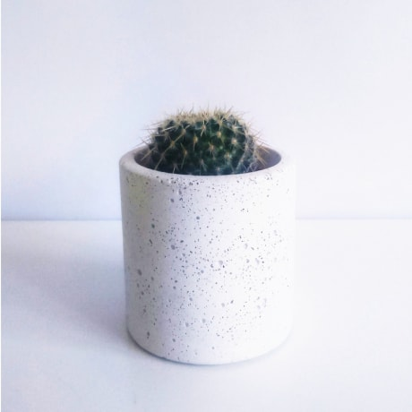 7b202636cffe Studio Noah Small White Concrete Planter Pot