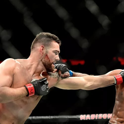 UFC: Reyes vs Weidman Preview