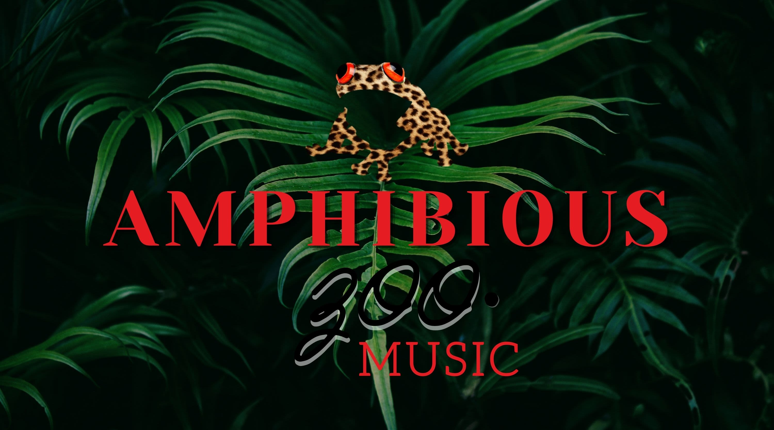 Label Special: Amphibious Zoo Music