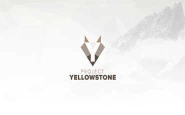 Project Yellowstone: The Election is Here
