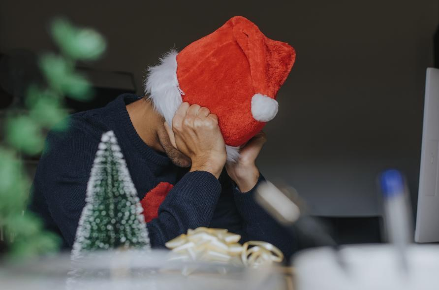 I Want A Hippocampus For Christmas.Holiday Stress And How To Beat It Pursuit By The