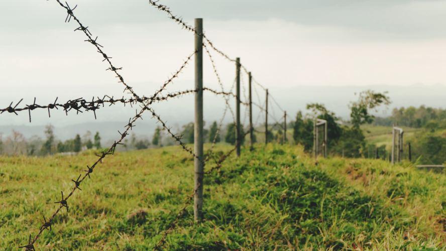 Marginal Development – States, Markets and Violence in Drug-Affected Borderlands