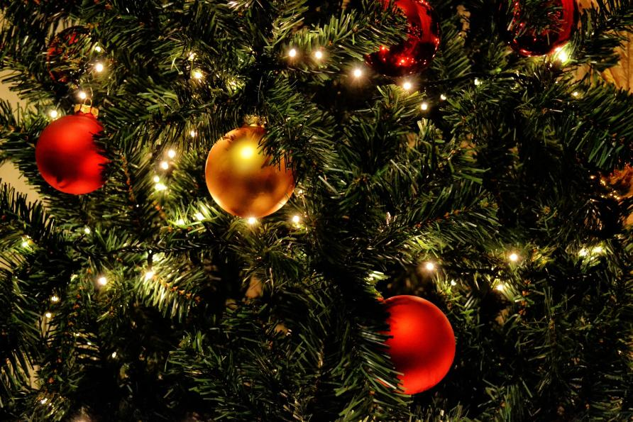 Images Of Christmas Trees.Going Green Are Fake Christmas Trees More Eco Friendly Than